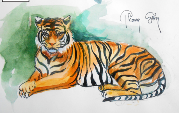 Bài học vẽ Basic Sketch – Vẽ động vật