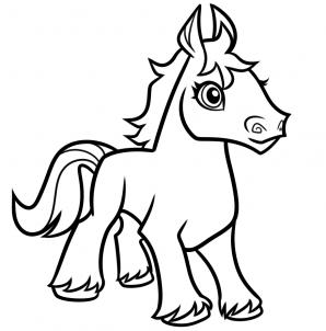 CMA - A Horse  (10)