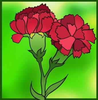6 bước vẽ hoa cẩm chướng – biểu tượng quốc gia Slovenia - cực đẹp (4)