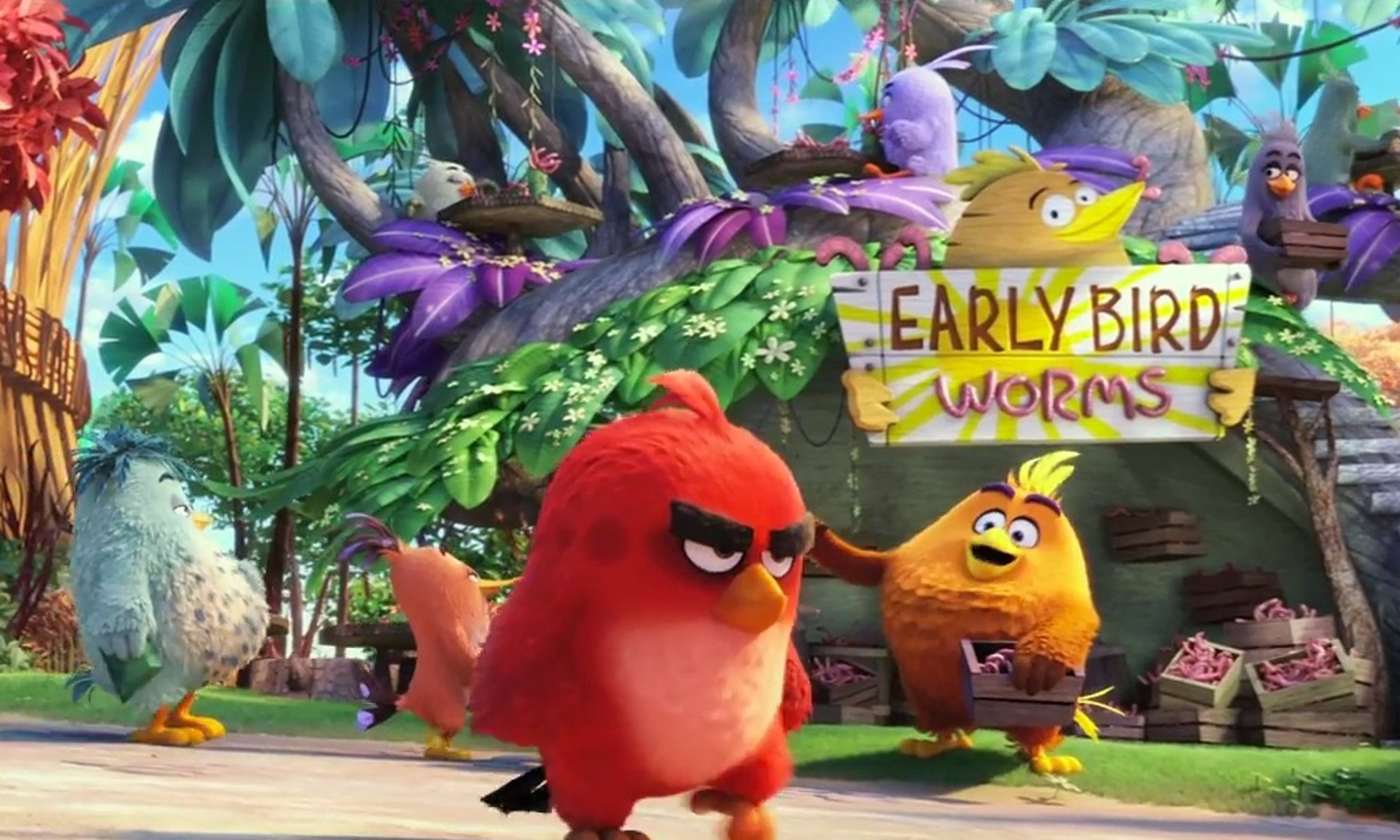CMA-Phim-Angry-Birds