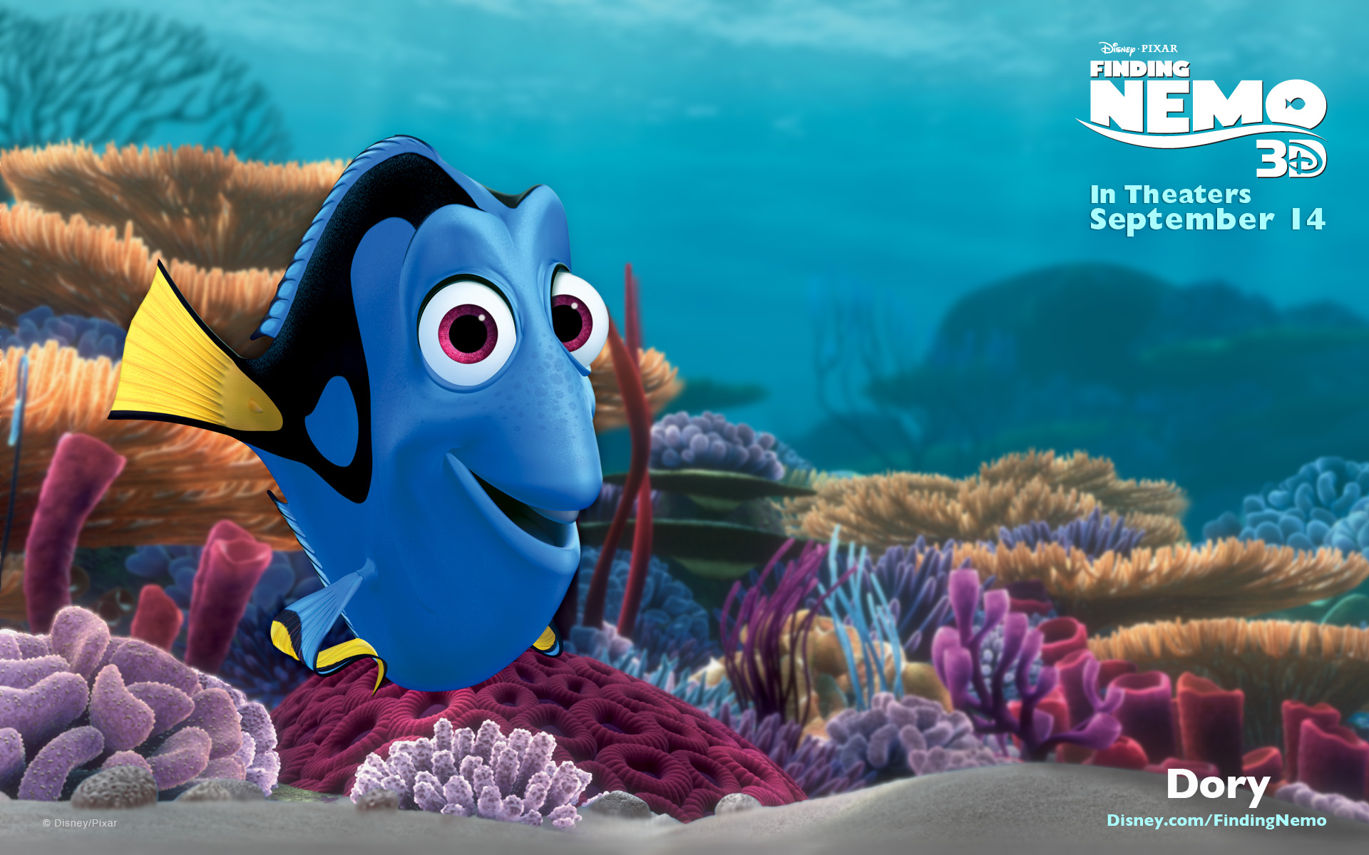 dory-fish-nhan-vat-chinh-trong-phan-tiep-theo-cua-finding-nemo