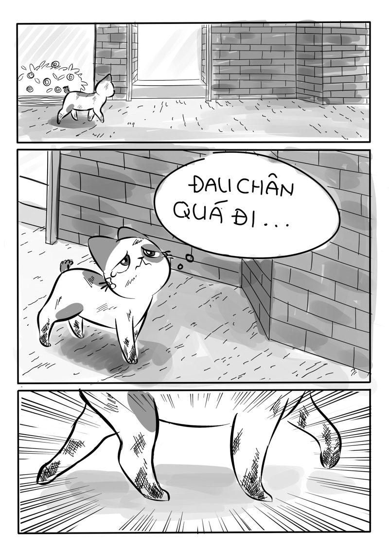 story-11