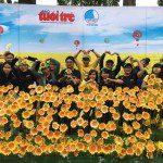Viện Truyện tranh và Hoạt hình tại Ngày hội hoa hướng dương 28