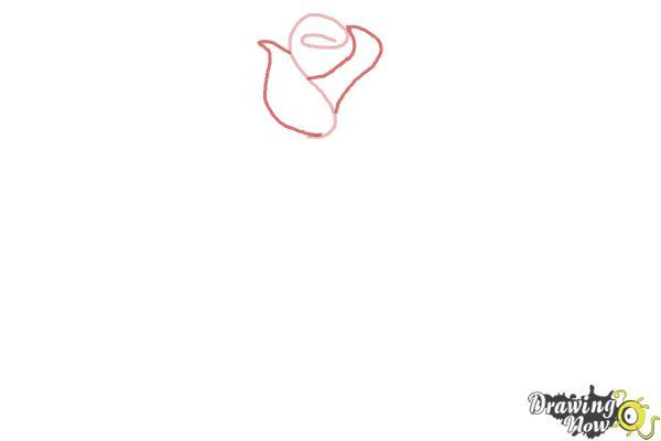 10 bước vẽ hoa hồng đơn giản cho người mới bắt đầu 2