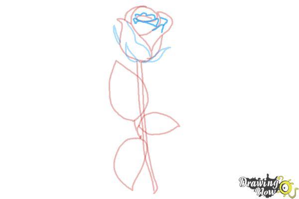 10 bước vẽ hoa hồng đơn giản cho người mới bắt đầu 7