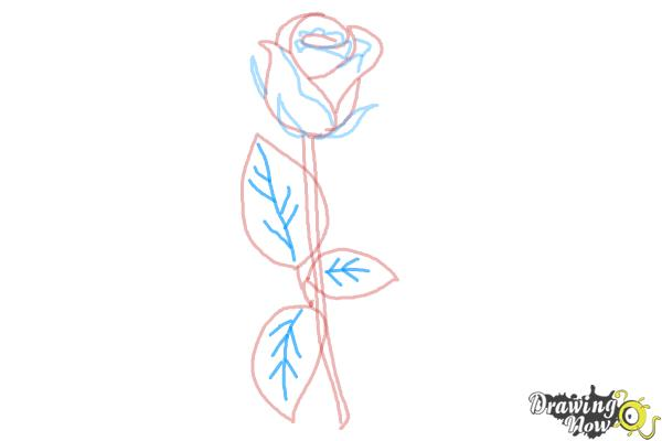 10 bước vẽ hoa hồng đơn giản cho người mới bắt đầu 8