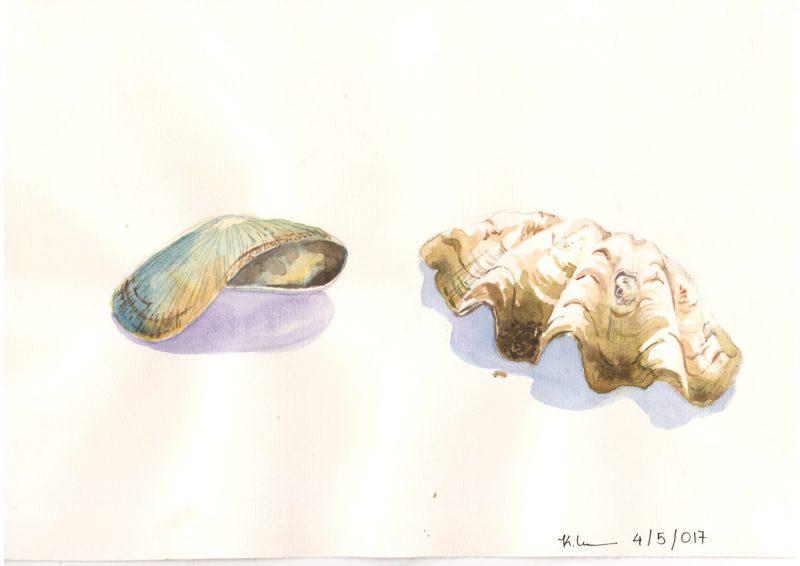 Thực tế Nam Du Watercolor Khương Thảo 3