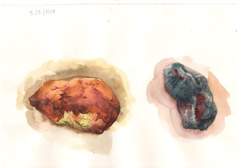 Thực tế Nam Du Watercolor Khương Thảo 8