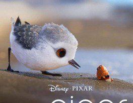 Piper câu chuyện đằng sau bộ phim chú chim nhỏ dũng cảm