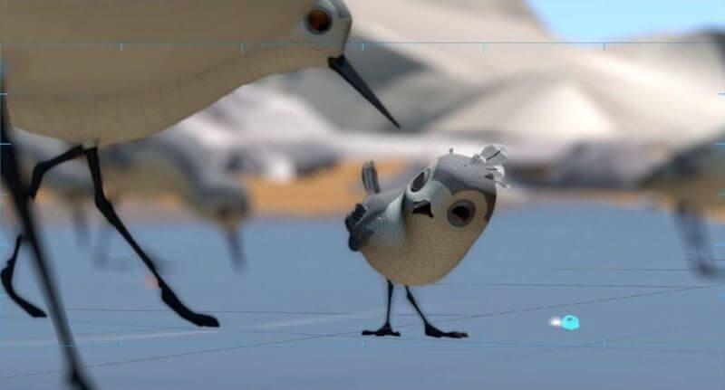 Piper câu chuyện đằng sau bộ phim chú chim nhỏ dũng cảm 3