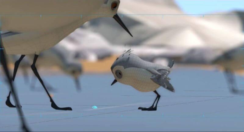 Piper câu chuyện đằng sau bộ phim chú chim nhỏ dũng cảm 4