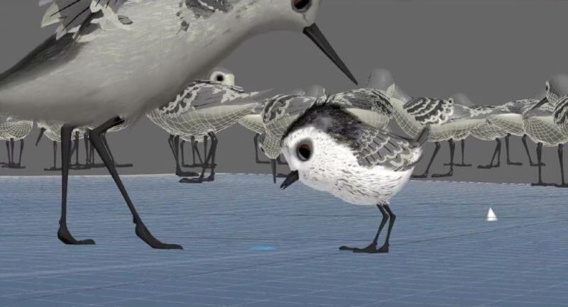 Piper câu chuyện đằng sau bộ phim chú chim nhỏ dũng cảm 6