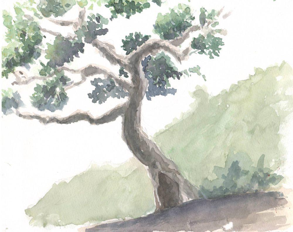 Tranh vẽ Màu nước - Phan Hồng Đức 14