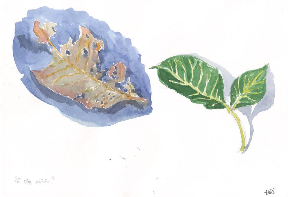 Tranh vẽ Màu nước - Phan Hồng Đức 6