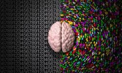 5 cách cải thiện não phải để sáng tạo hơn