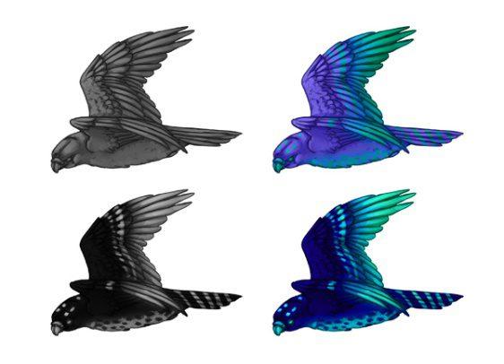 7 bài tập nâng trình Digital Painting 35