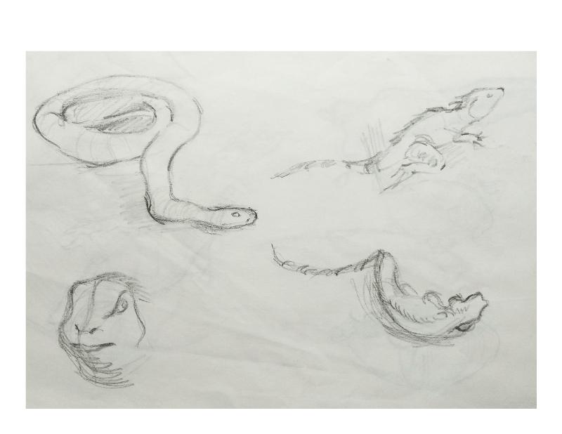 Bài tập Gesture Drawing Nguyễn Khương Thảo 29