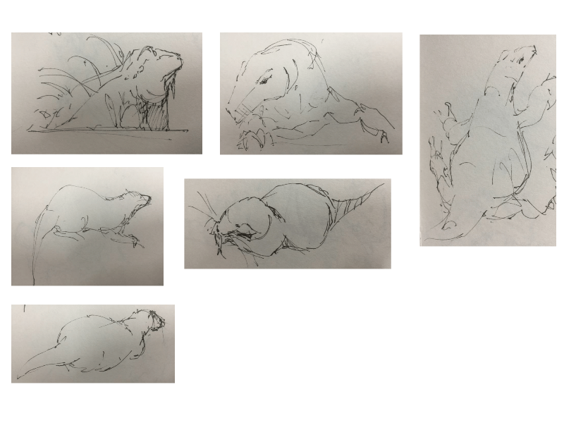 Bài tập Gesture Drawing Nguyễn Lê Bích Trâm 15