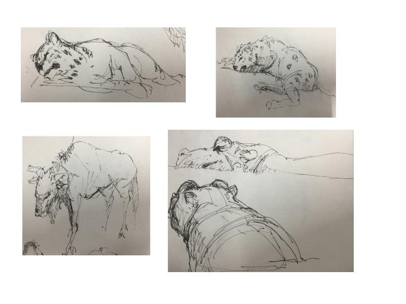 Bài tập Gesture Drawing Nguyễn Lê Bích Trâm 16