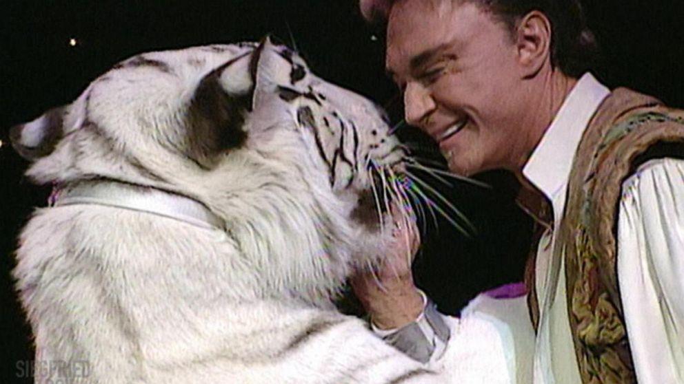 Roy Horn bị con hổ Montecore do chính ông nuôi tấn công vào năm 2003